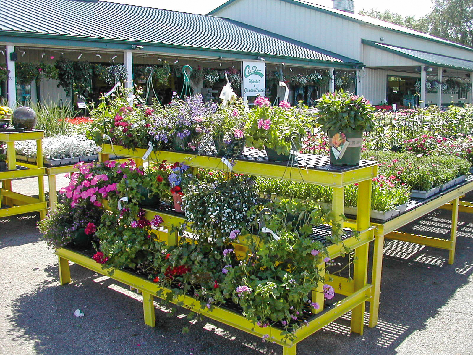 Greenhouse Display Benches Agri Of Virginia Inc