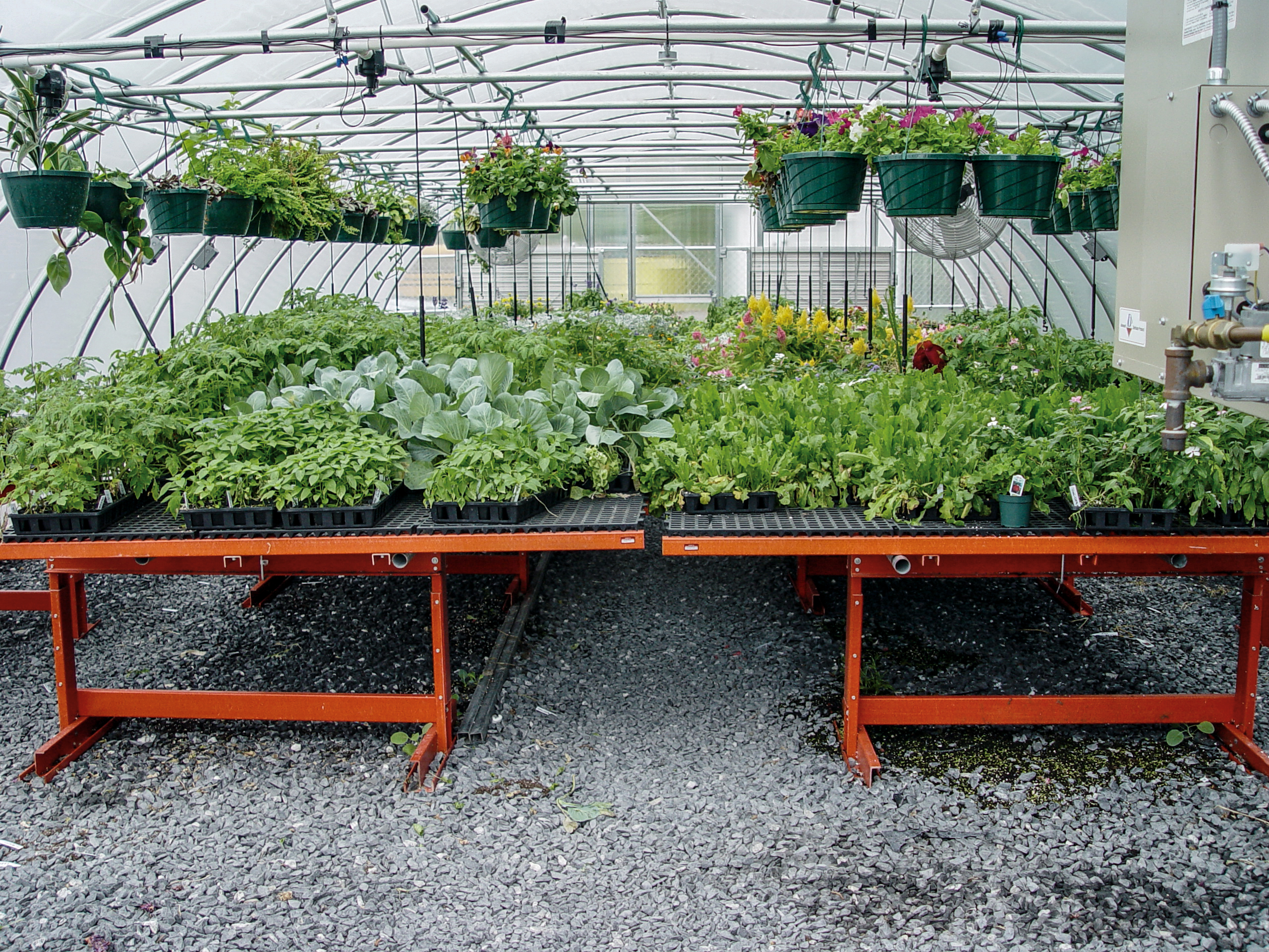 Rolling Greenhouse Benches Agri Of Virginia Inc